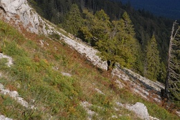 Chasseral, Les Roches